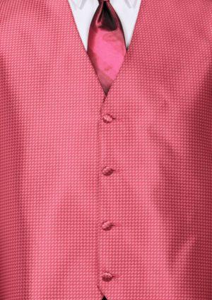Fuchsia Devon Vest with Fuchsia Ombre 4hand Tie